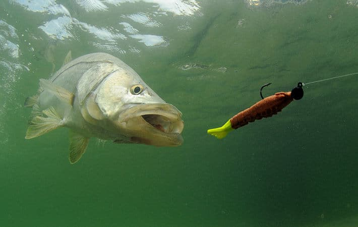 How to Make Fishing Lures