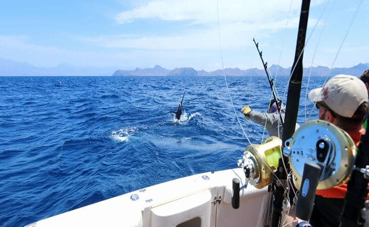 Saltwater Fishing Tips for Beginners